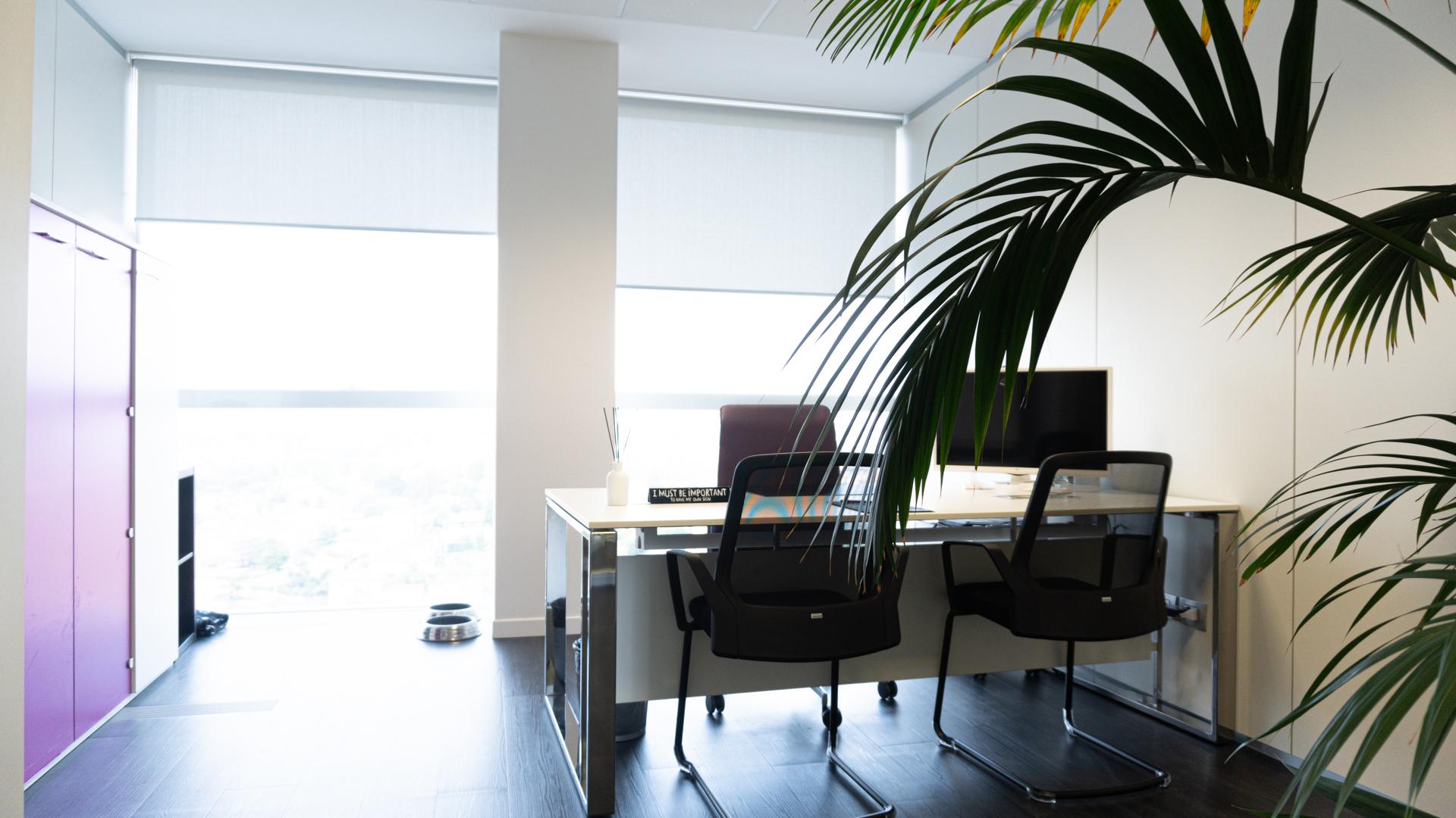 office_-13