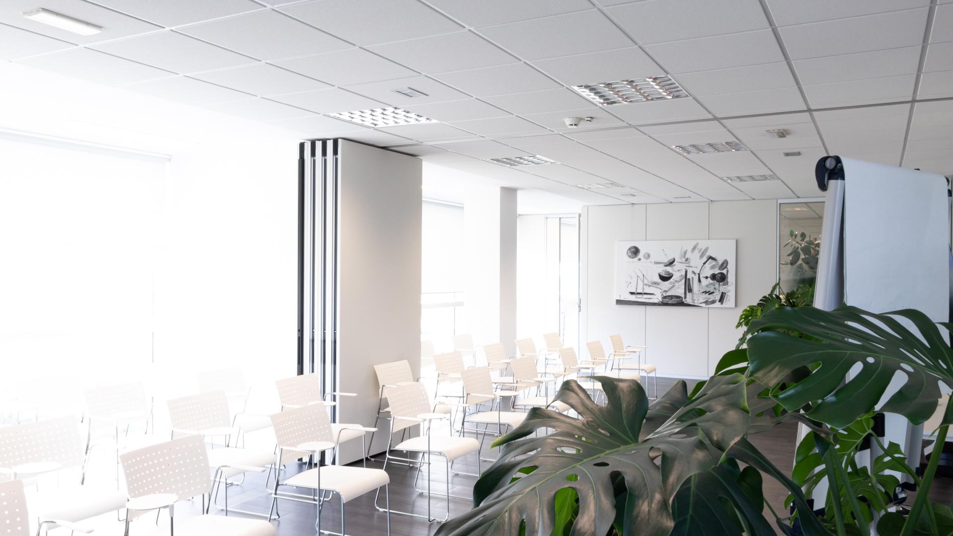 office_-2
