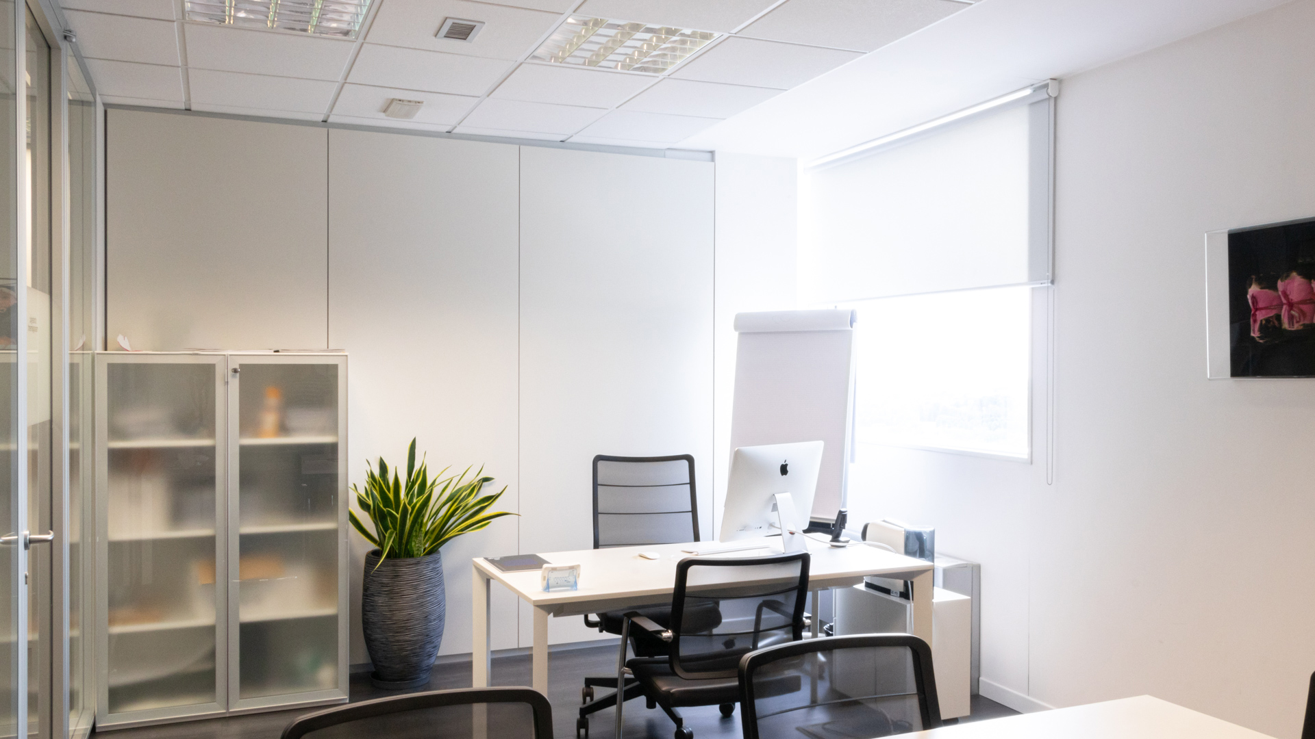 office_-3